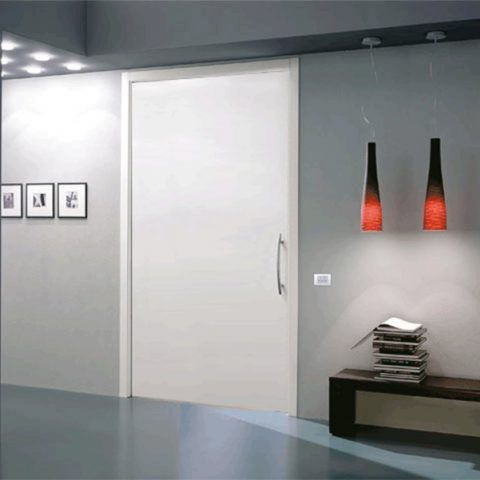 Tek Kanatlı Ray Kapı Sistemleri